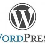 WordPress でデフォルトのカスタム分類のタームを自動で指定する